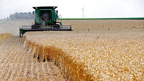 China says firms have started inquiring about US agri buys
