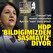Buldan HDP Esenyurt binasındaki PKK paçavralarını elebaşı Apo için 'sayın' deyip savundu: Bildiğimizden şaşmayız