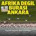 Ankara'nın renkli misafirleri: Flamingoların dansı hayran bıraktı