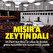 AK Parti'den Türkiye-Mısır dostluk grubu için kanun teklifi
