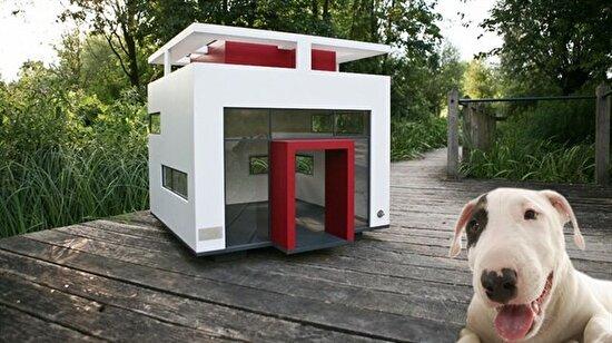 Köpekler için yapılmış malikaneler