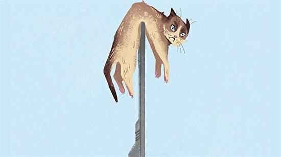 Teknolojik gelişmelerin kedilerin hayatını değiştirdiğinin 13 kanıtı