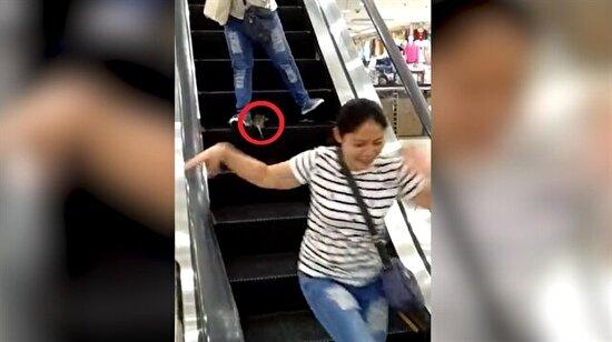 AVM'nin yürüyen merdiveninde terör estiren fare