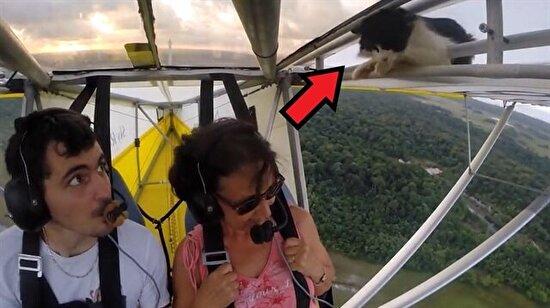Uçağın kanadına saklanan kedi amatör pilota zor anlar yaşattı