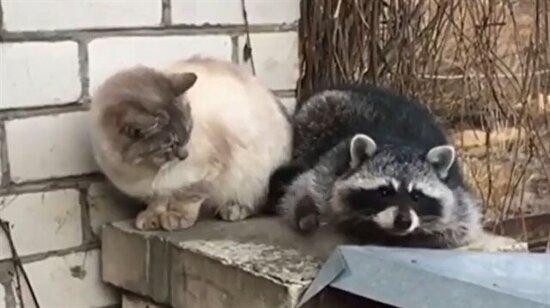 Barışmayacağım dokunma bana!
