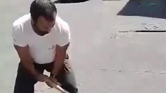 Güzel insanlardan heyecanlı köpek kurtarma operasyonu