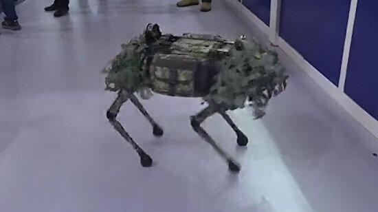Çin malı askeri robot köpeği