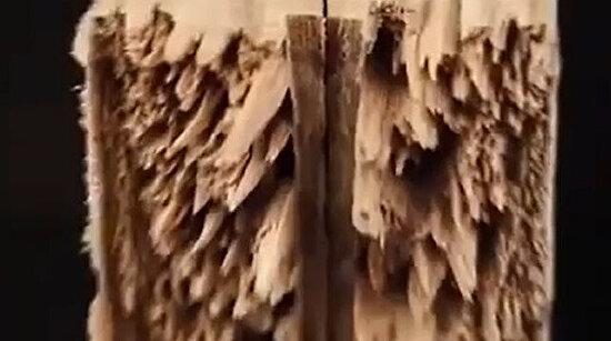 Bir parça odunla ortaya çıkarılan iş