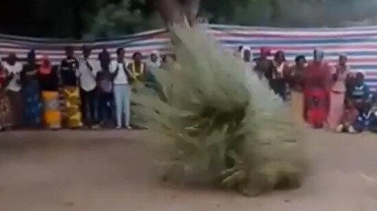 Tazmanya canavarı dansı