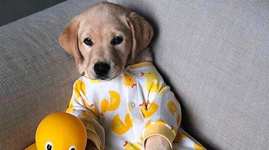 Pijamayı giydiğin an ne kadar yorulduğunu fark etmek