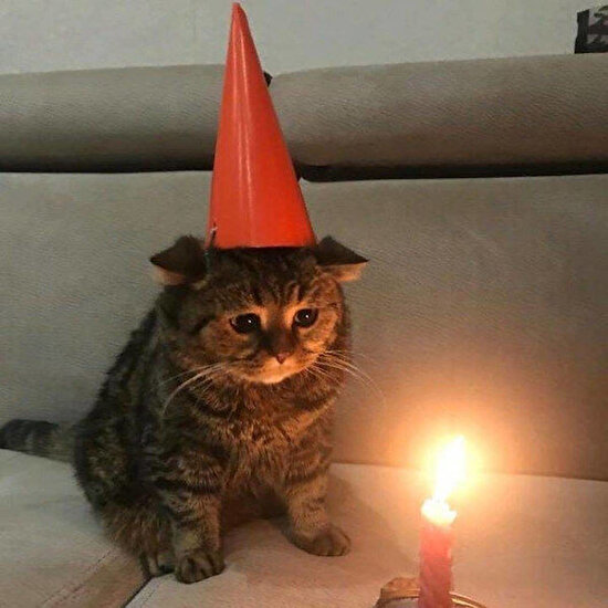 Doğum günü karantinaya denk gelenler