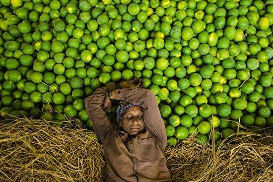 Hindistan'ın Haydarabad yakınlarında bir meyve satıcısı