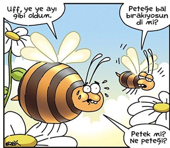 Vay ballı arı seni