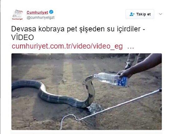 Su içen yılana yılan bile dokunmaz