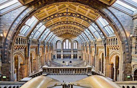 Doğal Tarih Müzesi, Londra