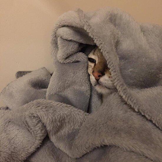 Yataktan çıkmak istemiyorum