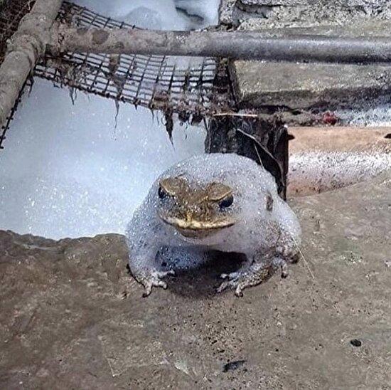 Duştayken sular kesildi