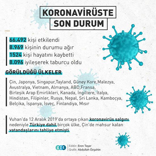 Koronavirüste son durum
