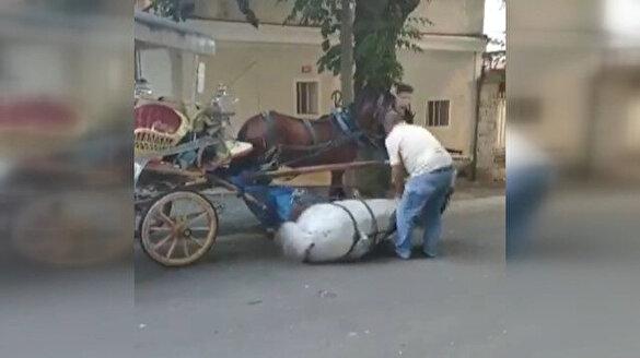 Faytona sürülen atın içler acısı hali kamerada