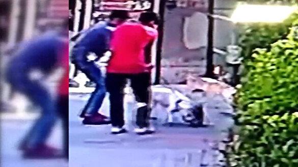 Pitbull cinsi köpek yavru kediyi saniyeler içerisinde parçaladı
