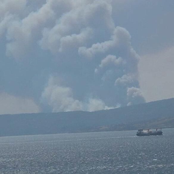Çanakkale'nin Gelibolu Yarımadası'nda orman yangını çıktı