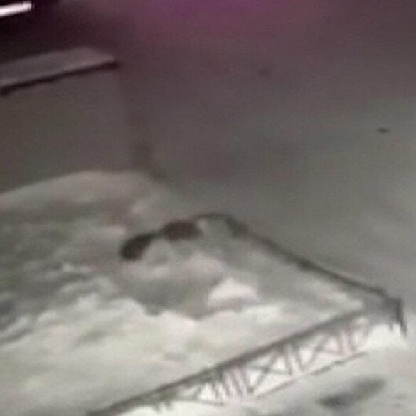 Rusya'da 4. kattan düşen çocuğu yerdeki kar birikintisi kurtardı