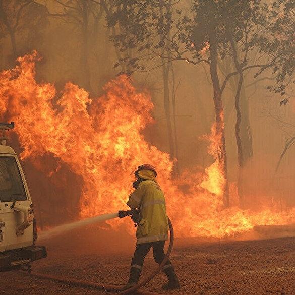 Avustralya yanıyor: Orman yangınları günlerdir kontrol altına alınamadı