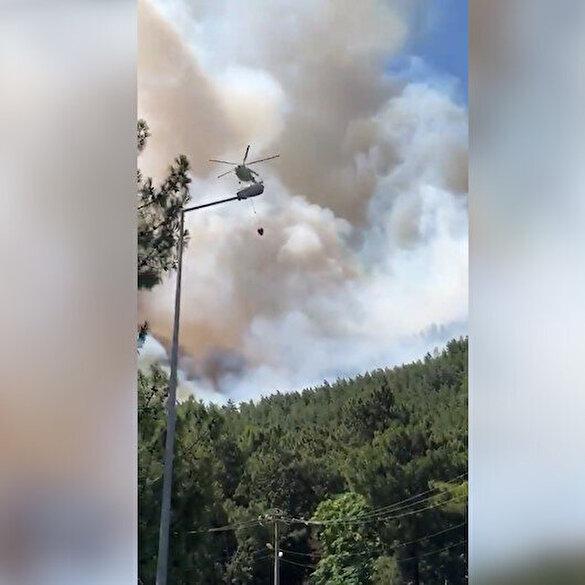 OGM'den Muğla'daki yangına ilişkin paylaşım: Yanan alanlar asla imara açılamaz 1 yıl içinde yeniden yeşillendirilir