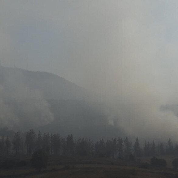 Osmaniye'de orman yangınına müdahale sürüyor