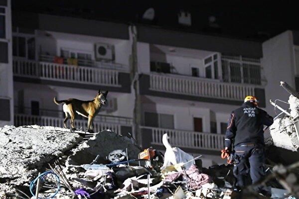 AFAD: Deprem sonrasında, 37'inin büyüklüğü 4'ün üzerinde olmak üzere, toplam 521 artçı sarsıntı yaşanmıştır