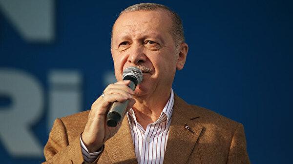 Erdogan calls Dutch politician 'fascist'  over cartoon