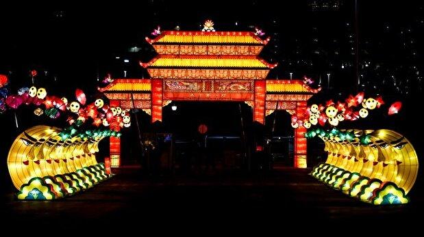 Dragon lights exhibit in Chicago
