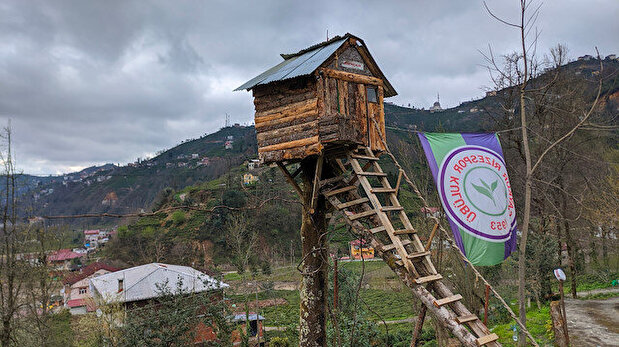 Turkish man hunkers down in treehouse amid Covid-19 outbreak