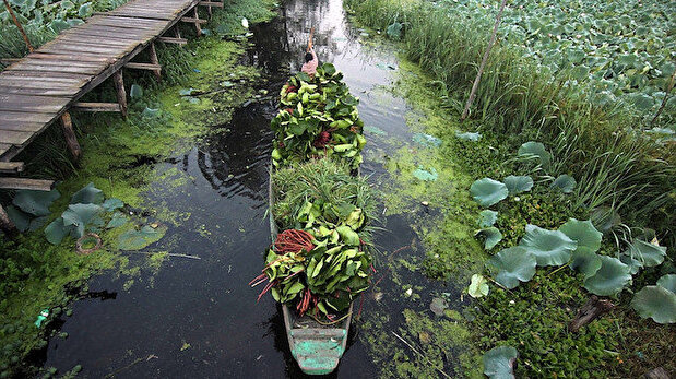 Floating vegetable market amid COVID-19 in Kashmir