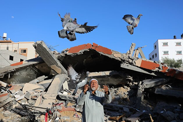 Elderly Palestinian man lives in tent following Israeli attacks on Gaza