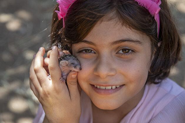 Animal-friendly family in Diyarbakir take care of 7 hedgehogs