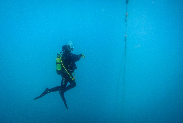 Divers discover underwater world in Turkey's Aydin