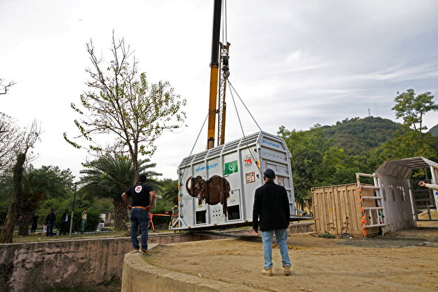 Pakistan's 'loneliest' elephant airlifted to Cambodia