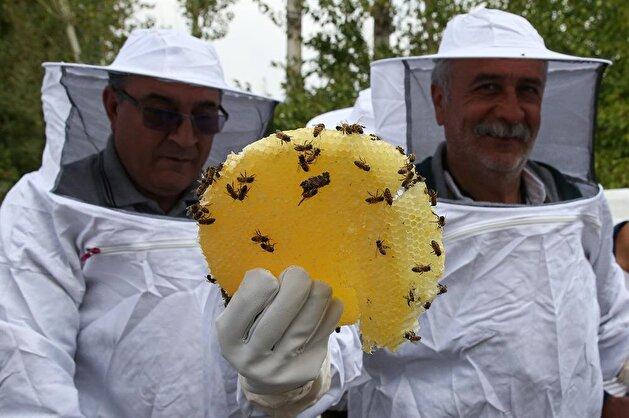 Customers harvest honey on their own in eastern Turkey farm