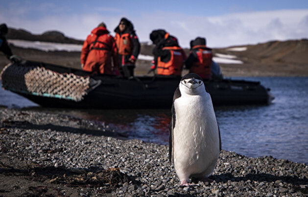 Race for research at continent of science and peace Antarctica