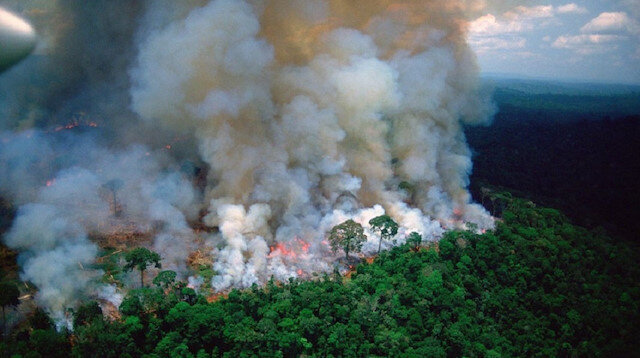 Brazil, France spar over Amazon rainforest fires
