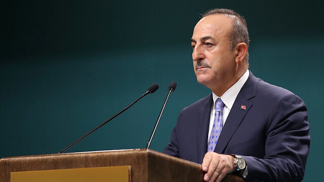 Pause of Turkey's op in Syria not ceasefire: Turkish FM