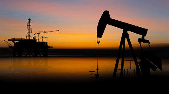 OPEC'in üretimi bir ayda 68 varil azaldı