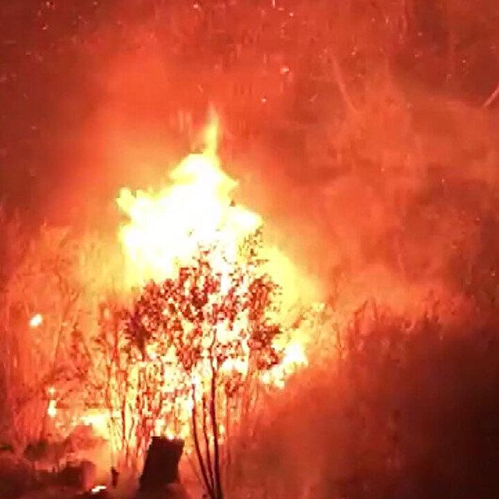 Avustralya'da yangın kontrol altına alınamıyor: Ordu göreve çağrıldı