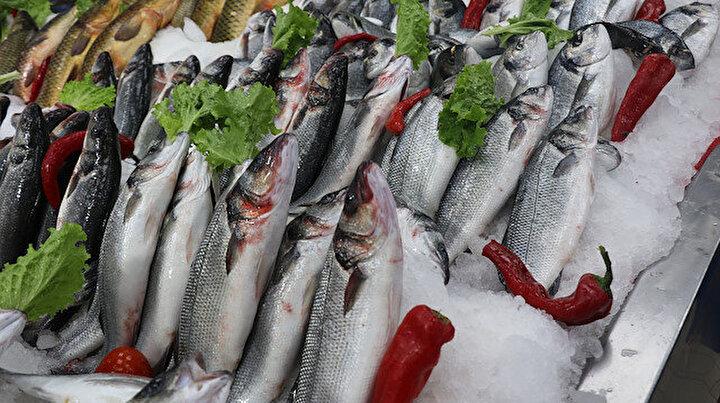 Balığa talep arttı: Koronavirüs nedeniyle levrek, çupra, somon yok satıyor