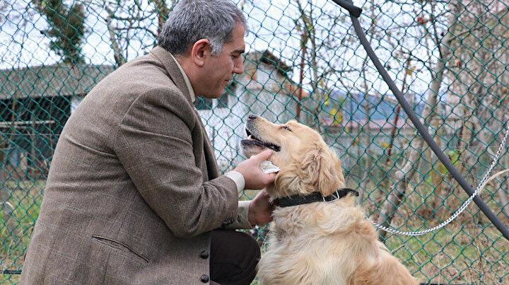 Altı yıllık eğitimle kanseri koklayacaklar: Erken teşhiste biodedektör köpekler