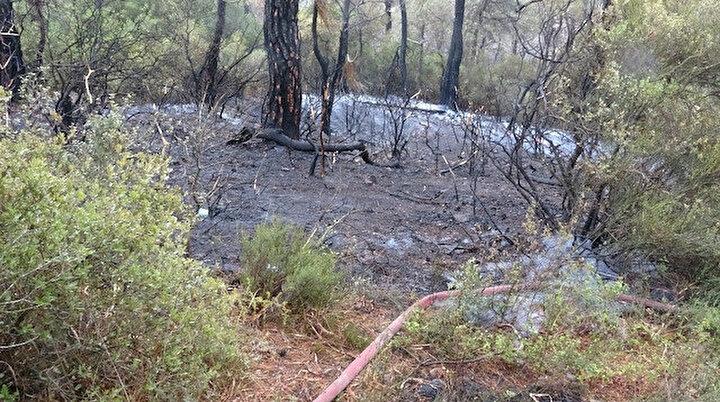 Heybeliada'da yangının neden olduğu tahribat görüntülendi