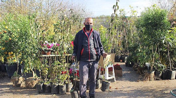 Koronavirüs ile bağ bahçe ile uğraşanların sayısı arttı: Fidan satışları patladı