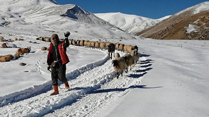 Yayla sezonunu kapatan Vanlı çobanlar köylerinin yolunu tuttu