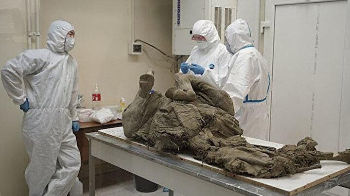 Rus bilim insanlarından dikkat çeken araştırma: 50 bin yıl önceki virüsleri tespit etmeye çalışıyorlar